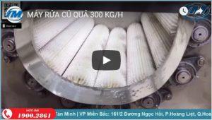 Máy rửa củ quả 300 kg/h